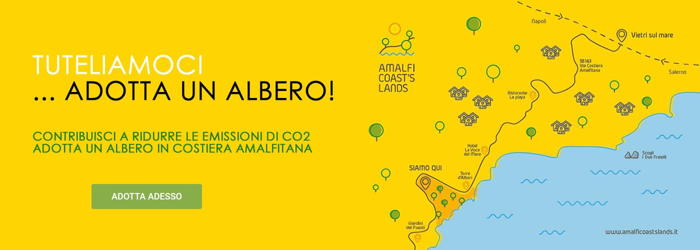 Adotta un Albero - yellow - Costiera Amalfitana - www.amalficoastslands