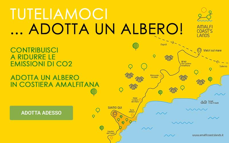 Adotta un Albero - yellow mobile - Costiera Amalfitana - www.amalficoastslands